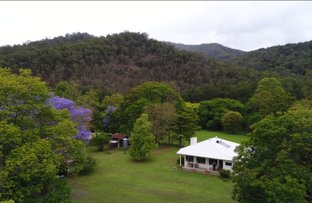 Picture of Bellingen NSW 2454