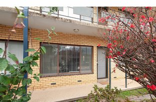 Picture of 2/519 Schubach Street, East Albury NSW 2640