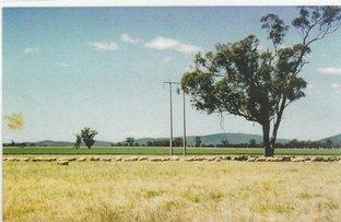 """""""BINDA"""", Gooloogong NSW 2805"""