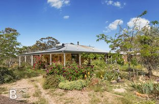 Picture of 297 White Gum Road, Barkers Creek VIC 3451