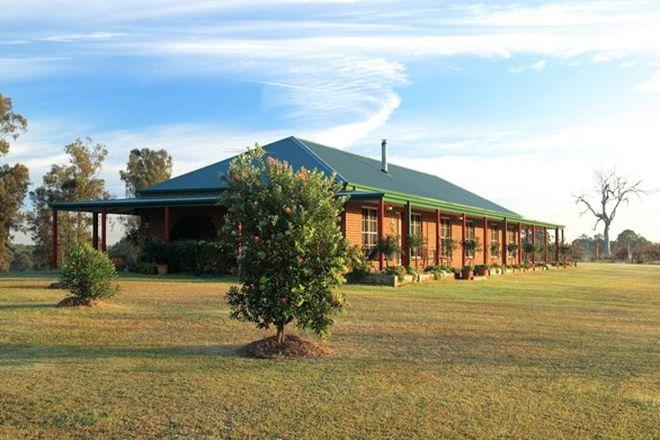 Picture of POKOLBIN NSW 2320