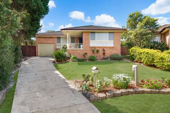 Picture of 6 Ray Place, MINTO NSW 2566