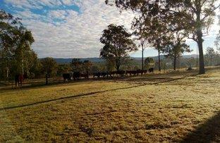 Picture of Lot 3 Thomas Road, Murphys Creek QLD 4352