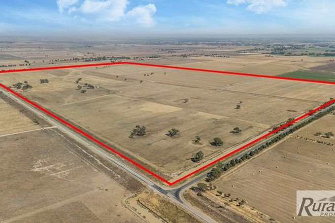 Picture of Kerang-Leitchville Road, COHUNA VIC 3568