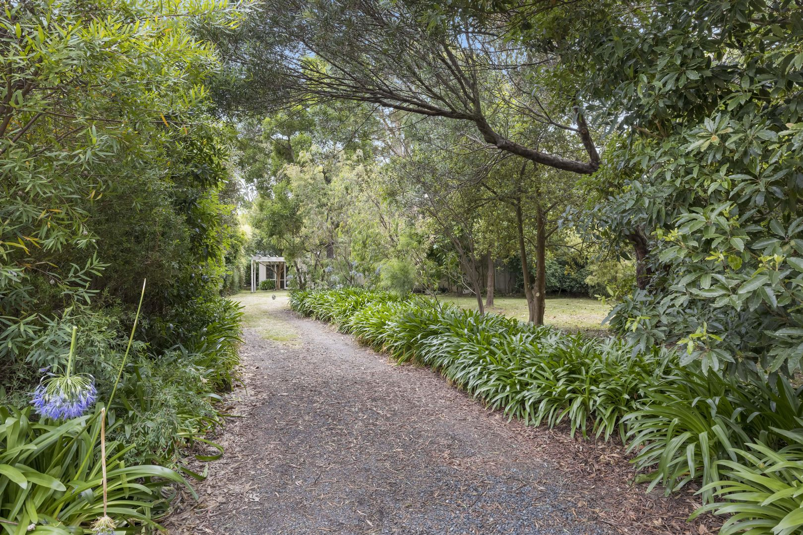 26 Spray Street, Merricks Beach VIC 3926, Image 1