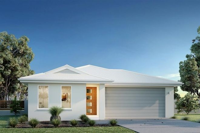 Picture of Lot 1903 Master Circuit, TRINITY BEACH QLD 4879