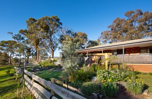 Picture of 17 Adams  Road, Harcourt VIC 3453