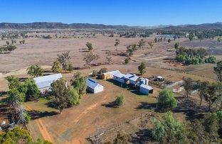 Picture of St Aubins Irrigation, Scone NSW 2337