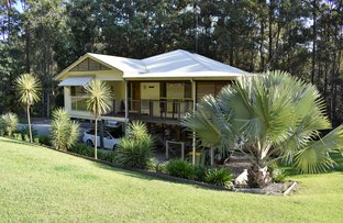 Picture of 19 Piccabeen Street, Doonan QLD 4562