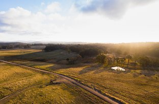 Picture of 749 Costellos Road, Mount Mitchell NSW 2365