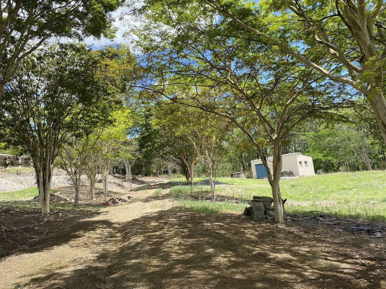 533 Geeberga Buthurra Road, Kuttabul QLD 4741, Image 1