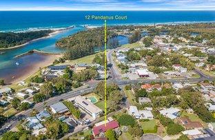 Picture of 12 Pandanus Court, Brunswick Heads NSW 2483