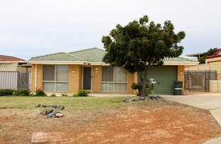 Picture of 3 Foley Court, Mount Tarcoola WA 6530