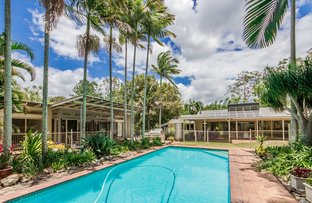 Picture of 164 Currey Road, Wongawallan QLD 4210