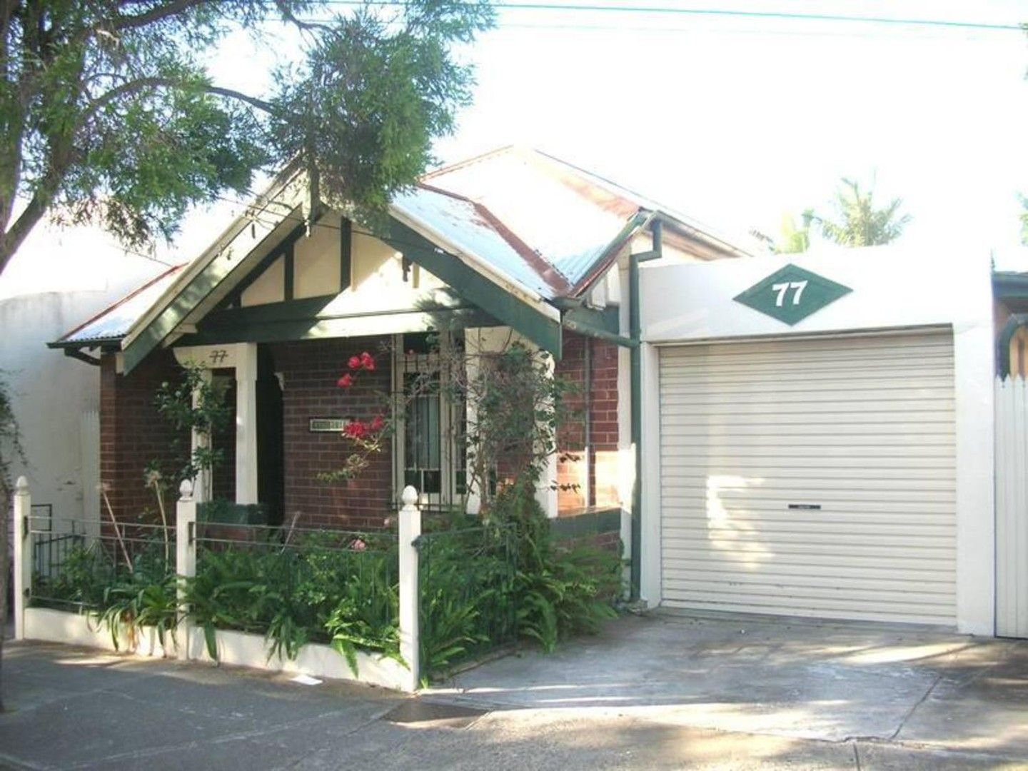 77 Frederick Street, St Peters NSW 2044, Image 0