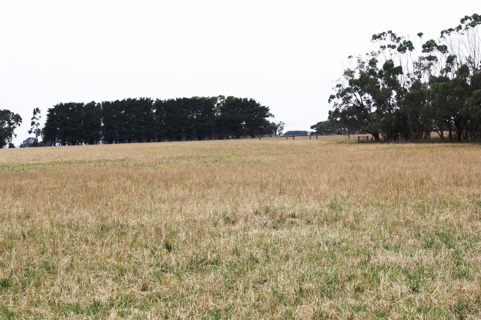 50 Roseneath Road, Purnim VIC 3278, Image 1