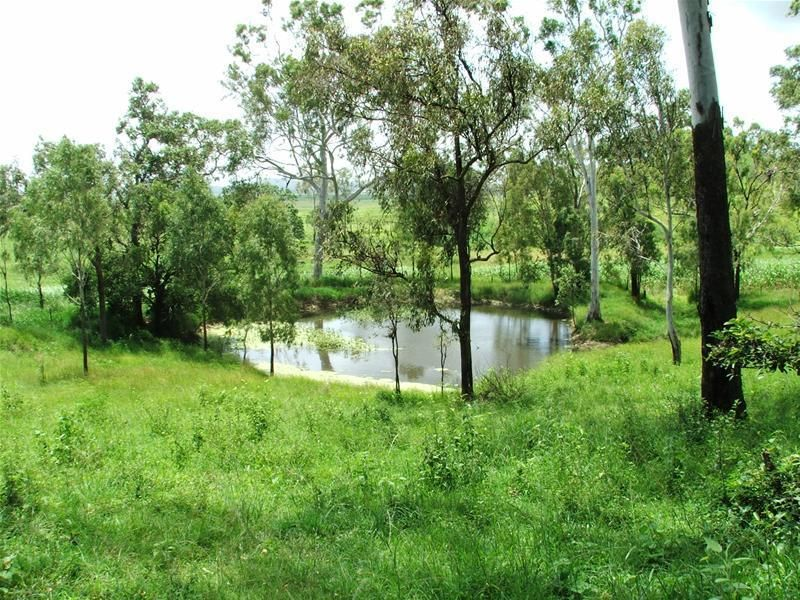 Whitakers Road, Sarina QLD 4737, Image 1