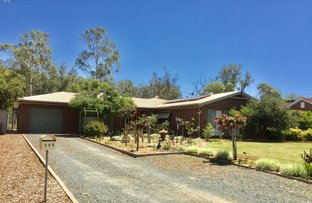 Picture of 355 Lang, Hay NSW 2711