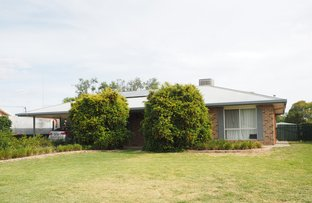 Picture of 44 Amaroo Drive, Moree NSW 2400