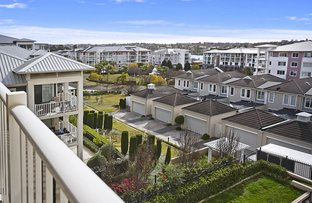 46/17 Orchards Avenue, Breakfast Point NSW 2137