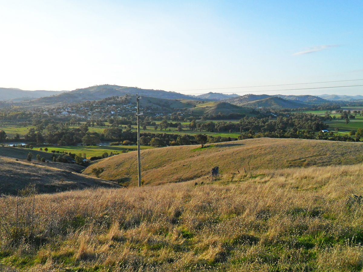 Lot 2 Springfield Lane, Gundagai NSW 2722, Image 0