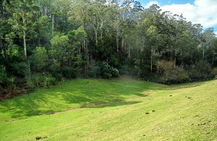 Picture of Portion/46 The Snake Track, Kiah NSW 2551