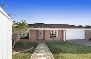 Picture of 17 Jayef Street, Sunnybank Hills QLD 4109