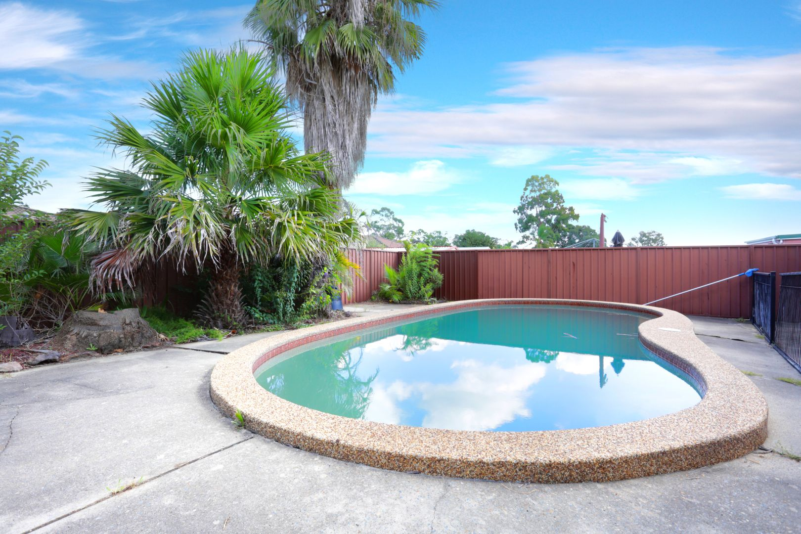 6 Mortimer Lewis Grove, St Clair NSW 2759, Image 2