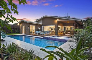 31 Ti Tree Avenue, Cabarita Beach NSW 2488