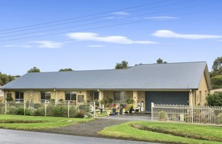 Picture of 43 Irrewillipe Road, Elliminyt VIC 3250