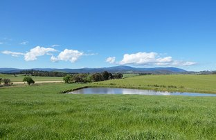 Picture of Yarra Glen VIC 3775