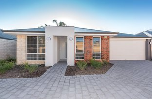 Picture of 242 Acton Avenue, Kewdale WA 6105