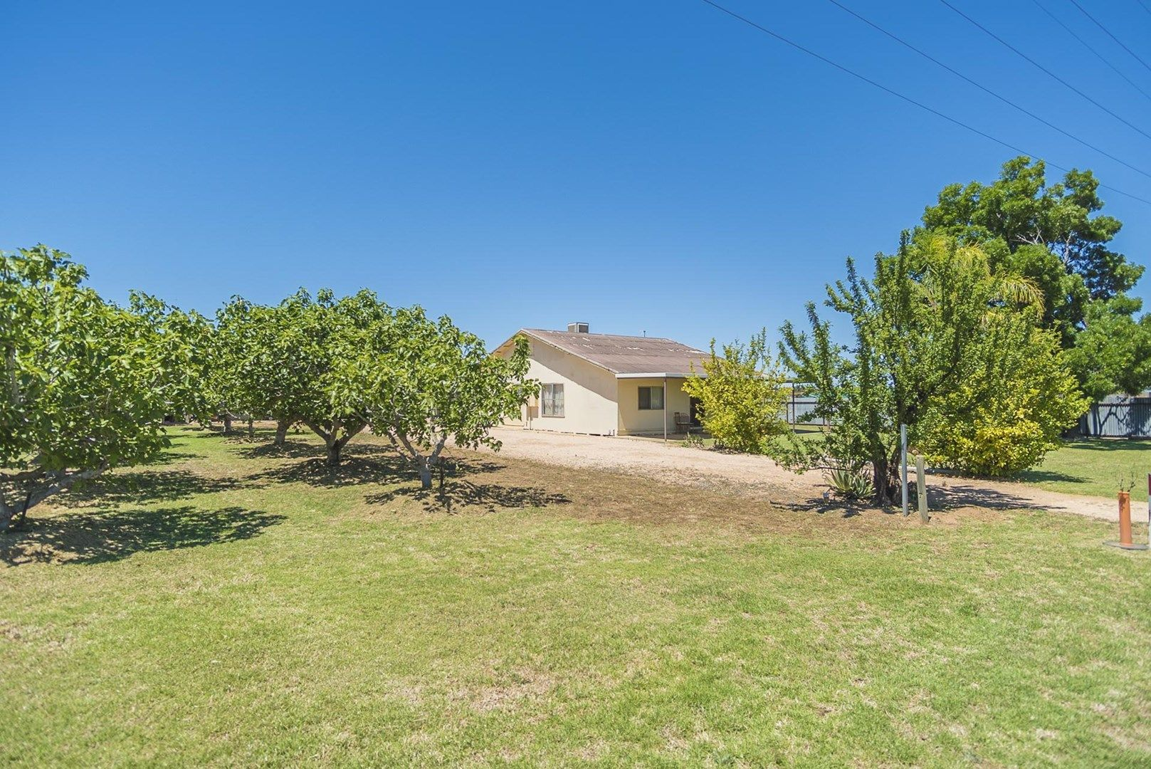 1226 Karadoc Avenue, Irymple VIC 3498, Image 0