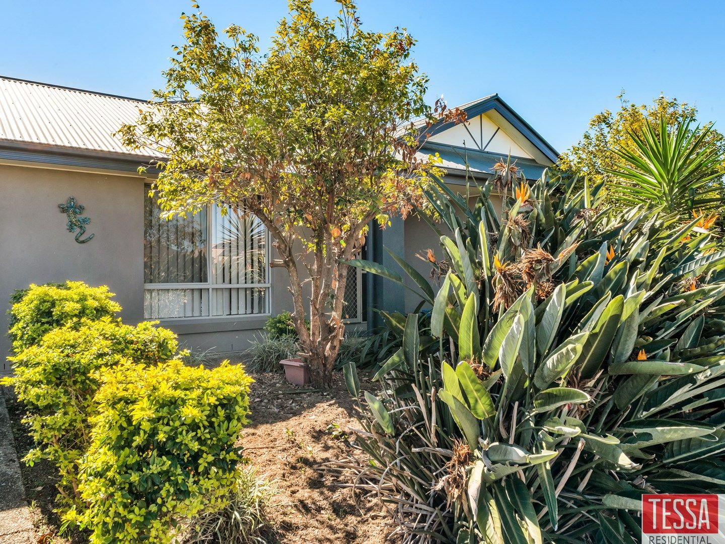 38 Briggs Drive, Caboolture QLD 4510, Image 0