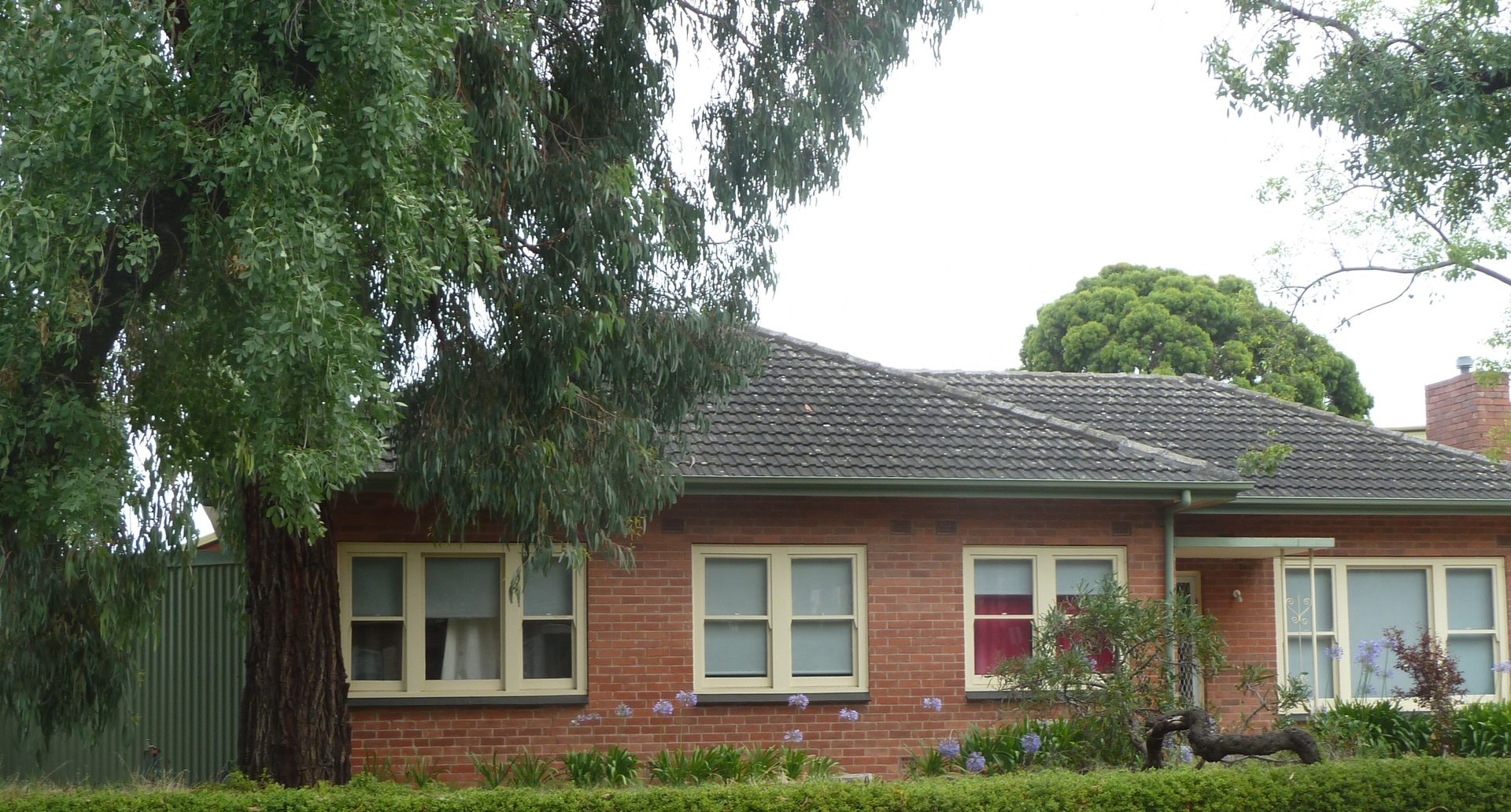 8 Bedford Square, Colonel Light Gardens SA 5041, Image 0