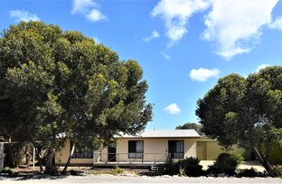 Picture of 18 Osprey Drive, Marion Bay SA 5575