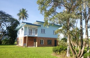 Picture of 984 Abergowrie Road, Trebonne QLD 4850