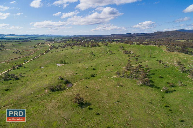 Hoskinstwon Road, Hoskinstown NSW 2621, Image 0