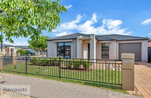 Picture of 21 Saint Lawrence Road, Andrews Farm SA 5114