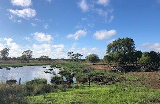 Picture of YARRANDINBINE Kenebri Road, Gwabegar NSW 2356