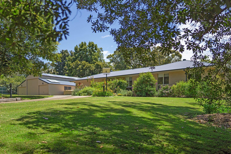 61 Bolwarra Park Drive, Bolwarra Heights NSW 2320, Image 1