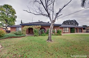 Picture of 358 Archer Street, Shepparton VIC 3630