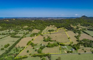 Picture of 209 The Pocket Rd, Billinudgel NSW 2483