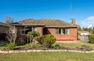 Picture of 14 Annesley Avenue, Bowral NSW 2576