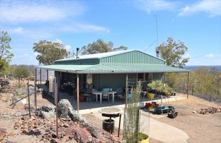 Picture of 1560 Gulf Road, Emmaville NSW 2371