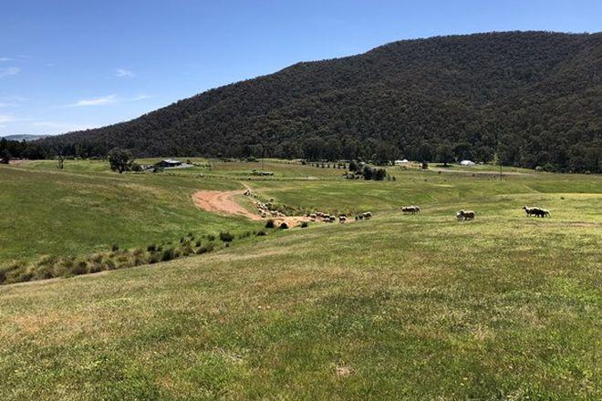 Picture of 3740 Jingellic Rd, LANKEYS CREEK NSW 2644