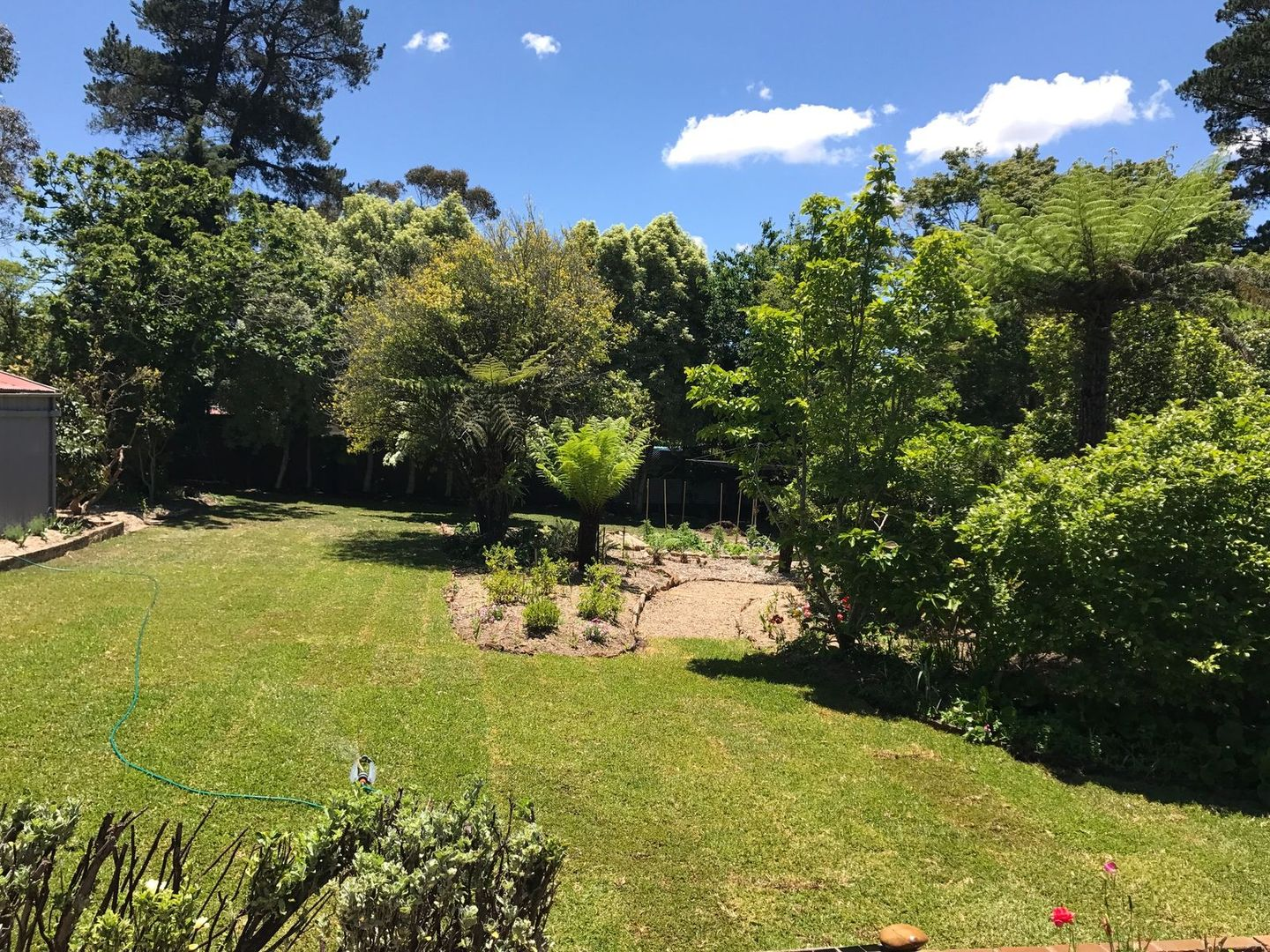 19 Forster Road, Katoomba NSW 2780, Image 1