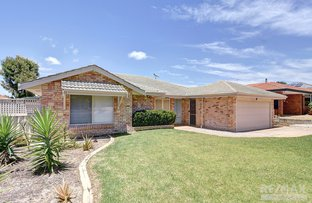 Picture of 33 Trephina Mews, Clarkson WA 6030