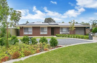 Picture of 1 Rush Court, Parafield Gardens SA 5107