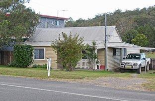 Picture of 142 Nancy Bird Walton Drive, Kew NSW 2439